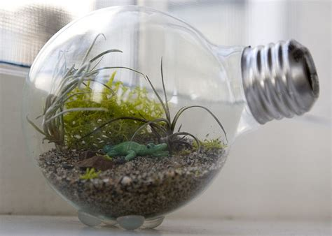 dazzle and delight 10 ways you can reuse light bulbs