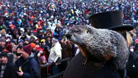 groundhog day celebration why do we celebrate groundhog day mnn nature