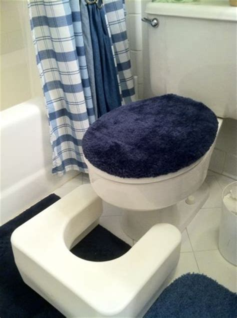Stool Moving In Toilet by Stool 171 Living Shalom