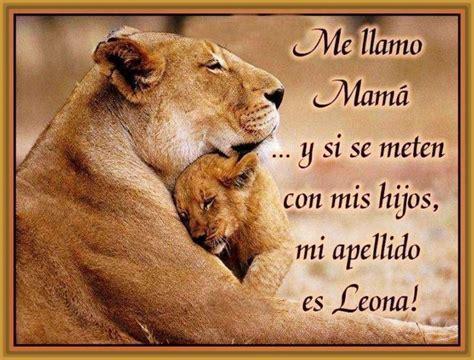 imagenes de leones y frases ver imagenes de leones con frases archivos imagenes de