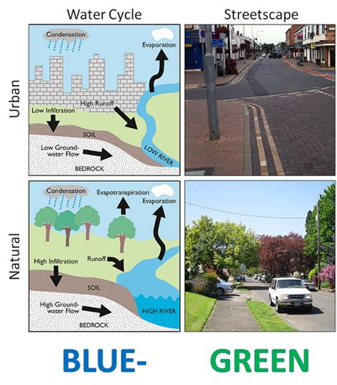 Landscape Amenity Definition Blue Green Cities