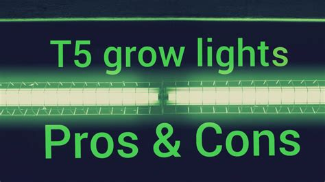 T5 Grow Lights by T5 Grow Light Pros And Cons T5 Grow Light Fixtures