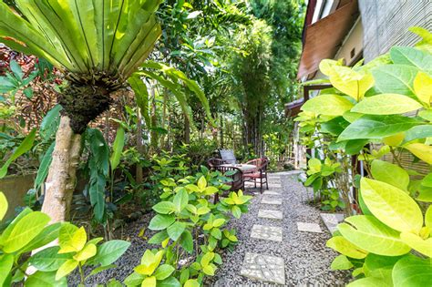 Melati Room Perfume Bali Tropical tropical bali hotel sanur bali ce petit je ne sais quoi