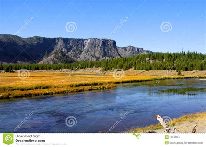 yellowstone landscape yellowstone landscape stock photos image 17543523