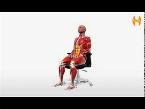 exercise  seated abdominal bracing youtube