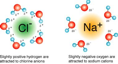 salt l negative ions ionic compounds does water ionically bond to chloride