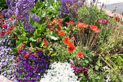 small flower beds small flower bed photos