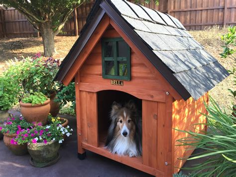 the best dog houses building the best dog house adriana s best recipes