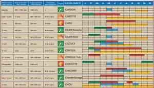 calendrier des semis de jardinfrou