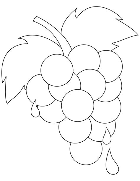 Grapes Coloring Page Coloring Pages Grapes Coloring Pages