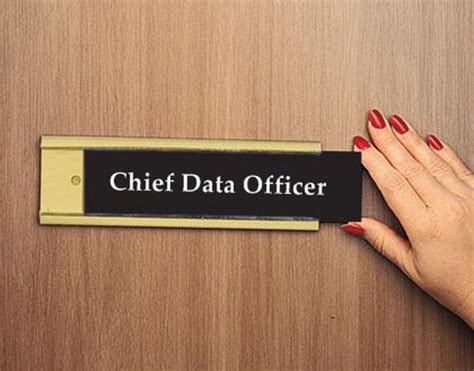 Chief Data Officer by Whose Is It To Manage Big Data The Cio Versus Cdo Debate