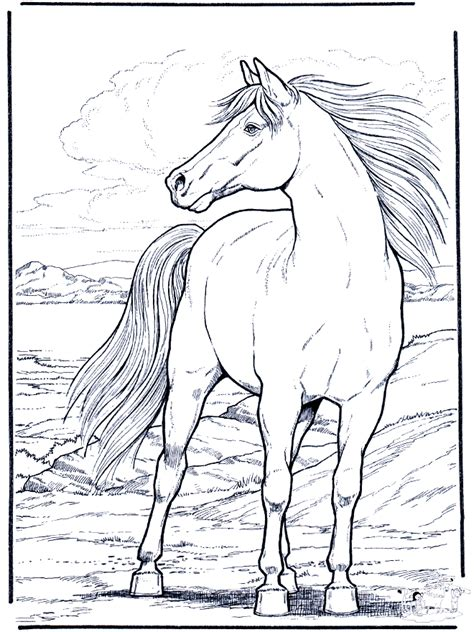 coloring pages horses print printable coloring pages