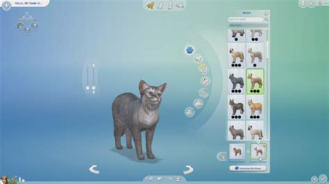 can dogs and cats breed breeds in the sims 4 cats and dogs sims