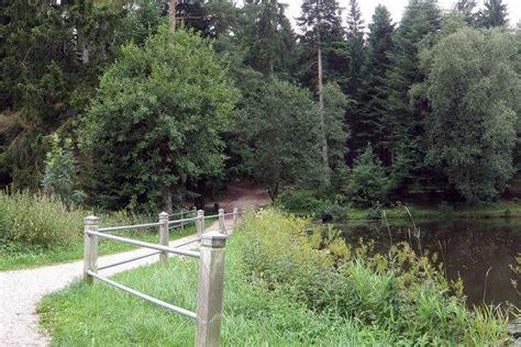 zwarte wandlen wandelen in het zwarte woud