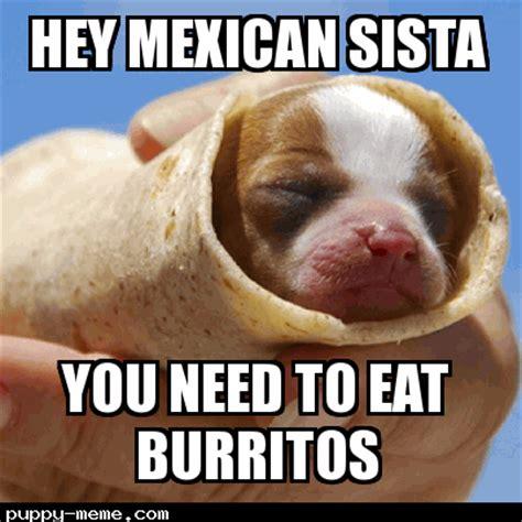 Burrito Meme - dog memes