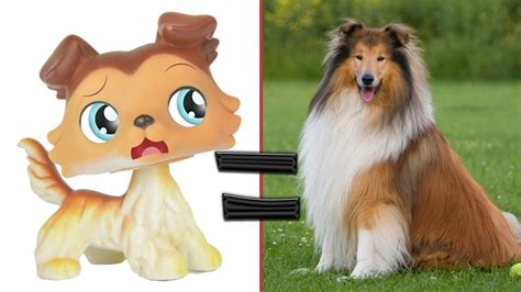 lps cats and dogs lps in real littlest pet shop popular cats and dogs in real mlp fever