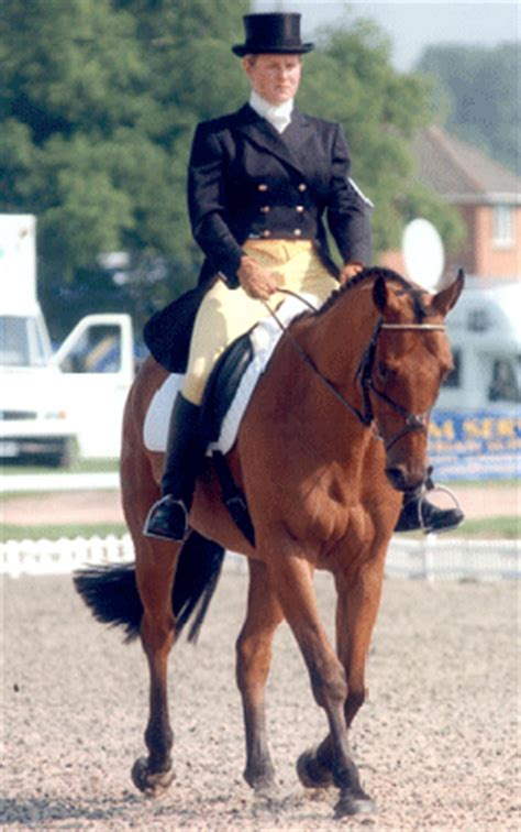 102 best images about dressage show attire on pinterest dressage attire tips for the dressage competition local