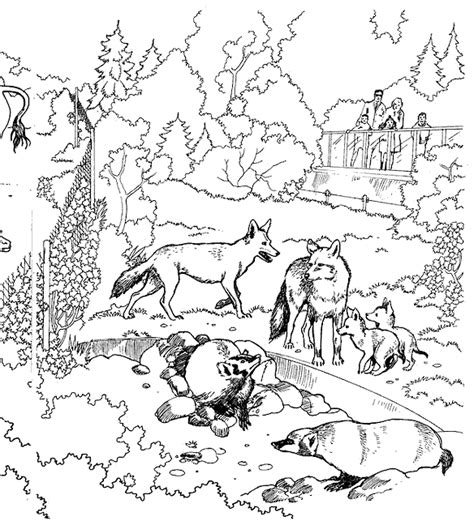 Animal Habitat Coloring Pages zoo coloring pages coloring