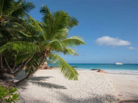 poplare lazio plage quot anse lazio quot praslin seychelles