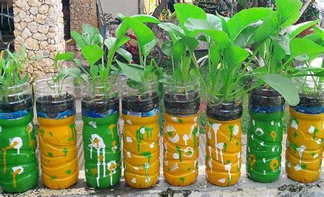 Budi Daya Belut Di Media Air Secara Organik H2029 agromedia inilah cara menanam sayuran hidroponik