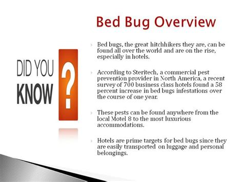 7 tips to prevent bed bed bug overview