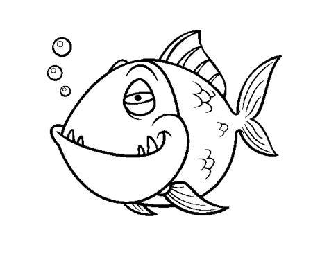 Piranha Coloring Page image piranha fish coloring page