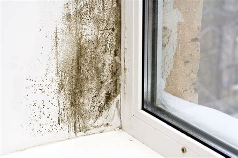 clean my house use your air conditioner to control humidity and mold town