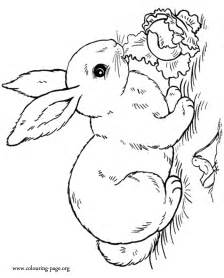 realistic rabbit coloring pages az coloring pages