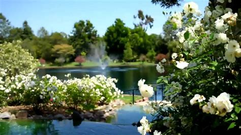 Gardens Fallbrook by Grand Tradition Estate Gardens
