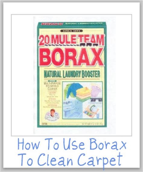 Can You Use A Carpet Cleaner On A by Use Borax To Clean Carpet And Remove Carpet Stains
