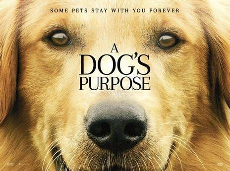 where was a s purpose filmed empire cinemas synopsis a s purpose
