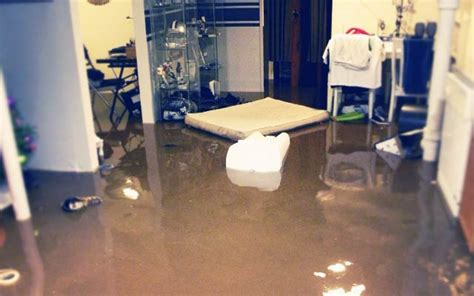 flood proof basement basement flooring modern house