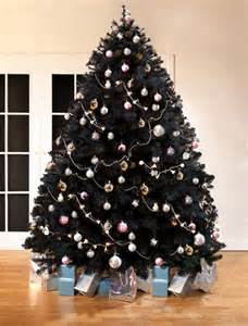 scottish fir black christmas tree 8ft tall artificial