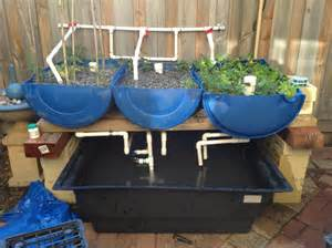Backyard Greenhouse Plans Perfect Aquaponics Designs For Your Own Aquaponics System