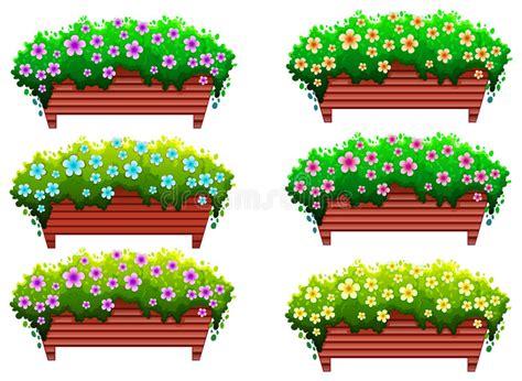 poudre blanche sur plantes d int rieur plantes d int 233 rieur avec des fleurs illustration de