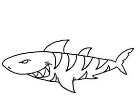 sharks coloring pages coloring pages sharks coloring home