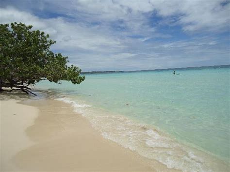sandals hedonism resorts seven mile past sandals and beaches picture of