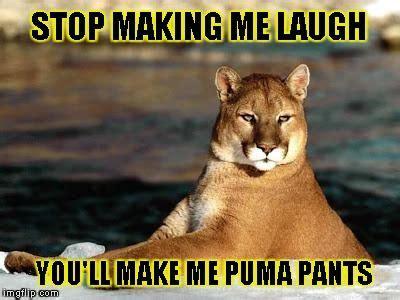 Puma Meme - 17 best ideas about custom meme on pinterest fun meme