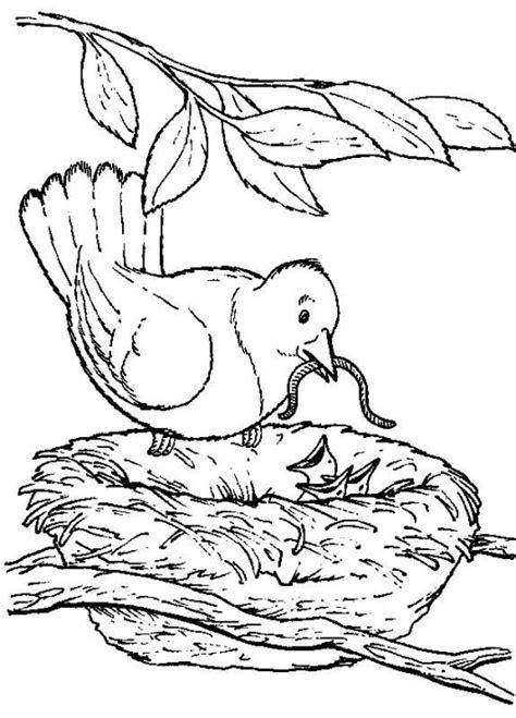 coloring books for elderly backyard animals and nature coloring books free coloring