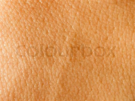 skin background stock photo 92353336 skin closeup texture background stock photo colourbox