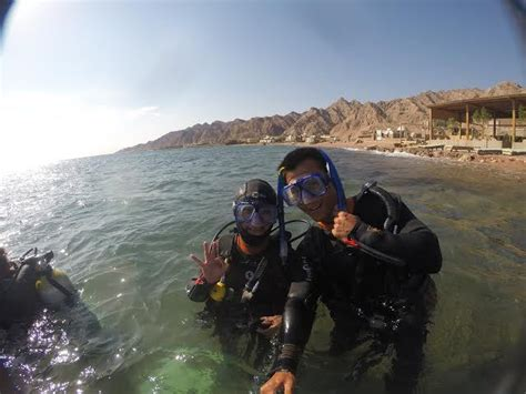 dive dahab guide to diving the sea in dahab johnny africa