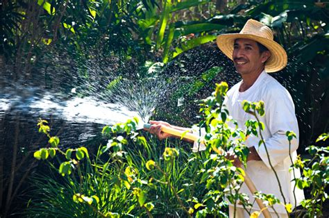 How To Be A Gardener by How Much Should I Pay Mexican Workers M 233 Xico Un