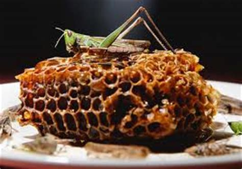 did saint john the baptist eat grasshoppers locusts bugs a trivial devotion you are what you eat matthew 3 4