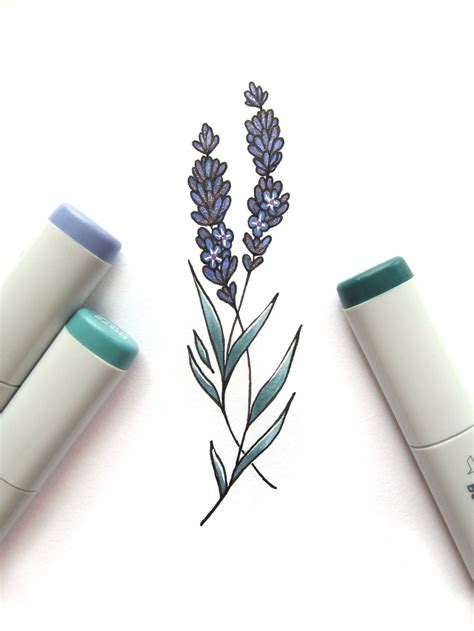 lavendar tattoo lavender drawing tattoos pinte