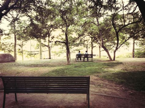 bench from 500 days of summer making the most of any situation