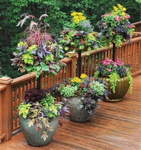 hanging garden containers 25 best ideas about tiered planter on herb