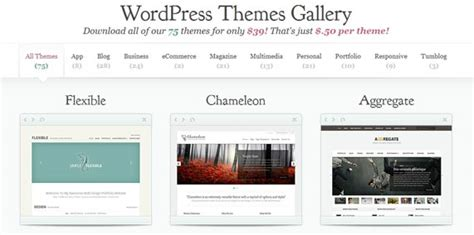 wordpress layout guide tips to choose the best wordpress theme for your website