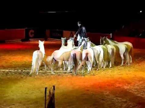 salon internacional del caballo sal 243 n internacional del caballo espect 225 culo sicab 2014