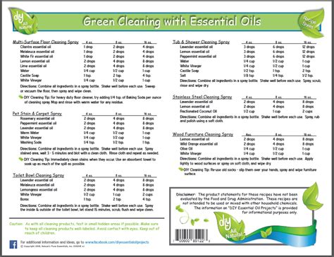 printable doterra recipes essential oils cleaning recipes thecarpets co