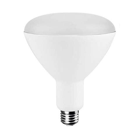 Ecosmart Led Light Bulbs Ecosmart 75w Equivalent Daylight Br40 Led Light Bulb 4 Pack Ecs Br40 75we Cw 120 G2 Bl The
